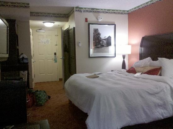Hilton Garden Inn Chattanooga Downtown: Standard room with king bed