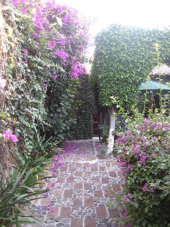 Garden pathway-QQ Motel