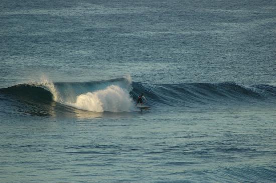 Coastline Cottages Kauai: surfer from the balcony