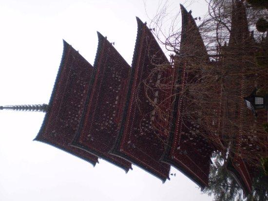 Saishoin Temple: 五重塔