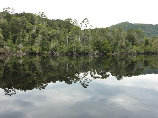 Mt Lyell Anchorage: REFLECTION ON THE GORDON RIVER
