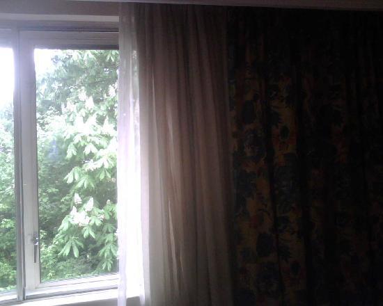 Hilton Newbury North: Grotty greying net curtains