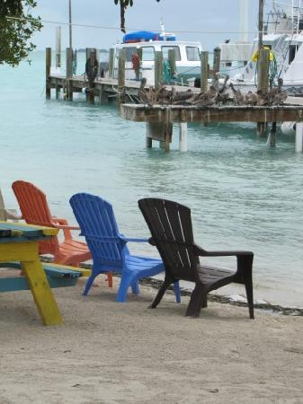 Robbie's of Islamorada: laid back place