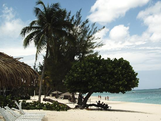 Caribbean Club: beautiful beach