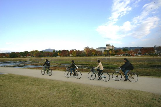 Kyoto Cycling Tour Project: 鴨川を爽快にサイクリング