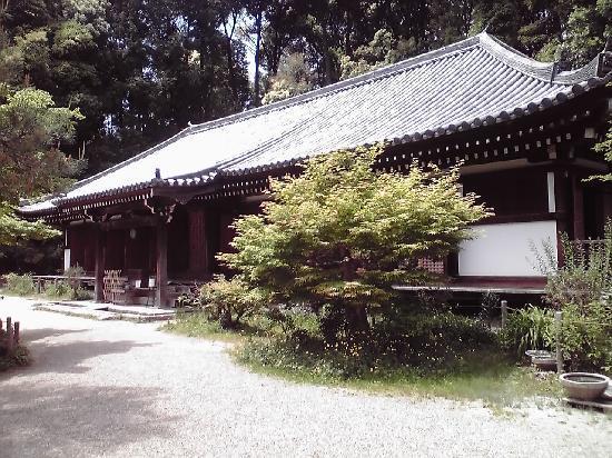 Kizugawa, Japón: この浄瑠璃寺本堂の中に阿弥陀如来があります