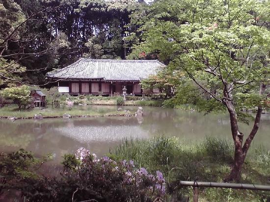 Kizugawa, Japón: 庭園