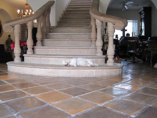 Hacienda San Angel : just one of the many amazing stairwells