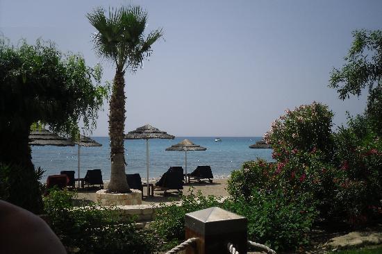 Columbia Beach Resort Pissouri: Beach bar view