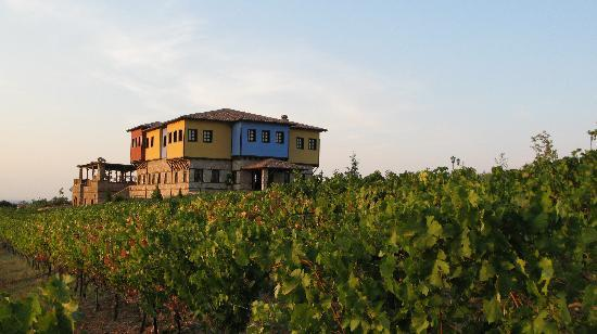 Estate Kalaitzis: Wineyard and hotel