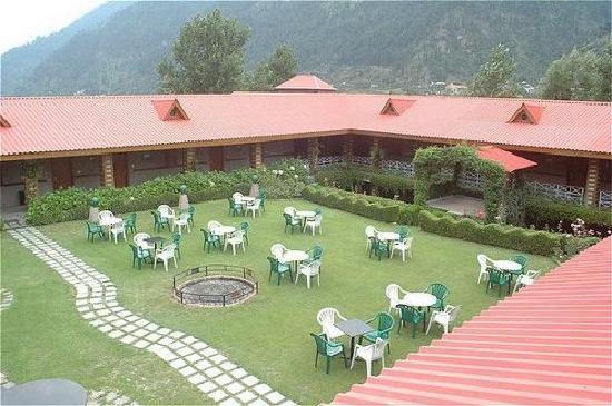 White Meadows - Manali: lawn its awesome