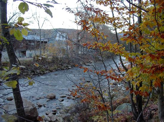 Riverbank Motel and Cabins: CLARKS TRADING POST ACROSS THE RIVER
