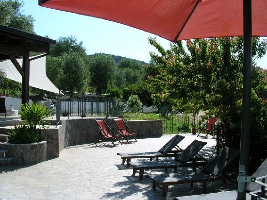 B&B Borgo del Nespolo: Terrasse mit Liegestühlen neben dem Pool