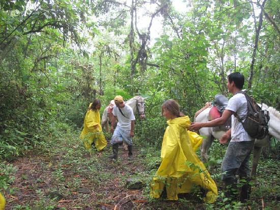 Montanita, Ecuador: sendero la bola de oro