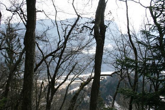 Hotel Triglav Bled: la natura