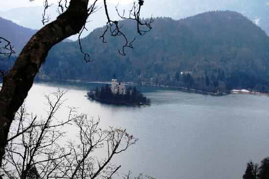 Hotel Triglav Bled: il lago
