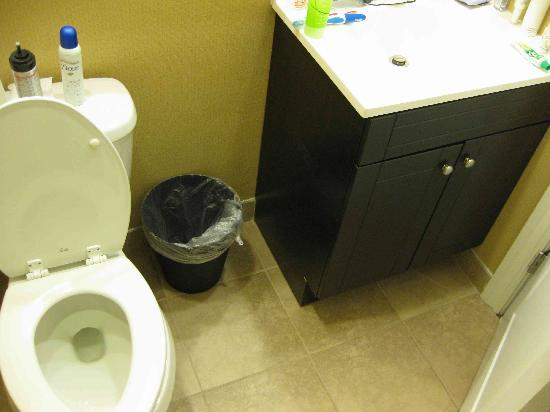 Stone Villa Inn San Mateo - San Francisco SFO: Too cramped! The space above the toilet bowl is curved so my bottles kept slipping and dropping
