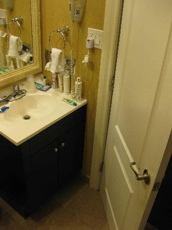 Stone Villa Inn San Mateo - San Francisco SFO : Small sink counter top.