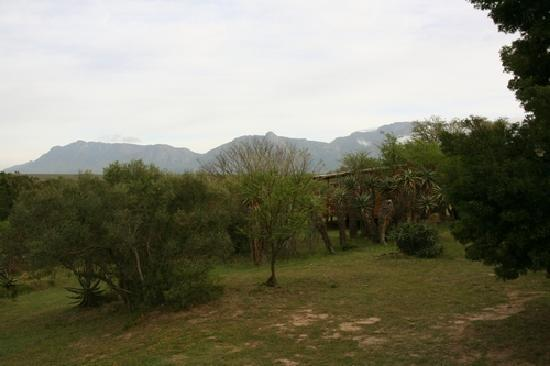 Lang Elsie's Kraal Rest Camp: View and neighbouring chalet