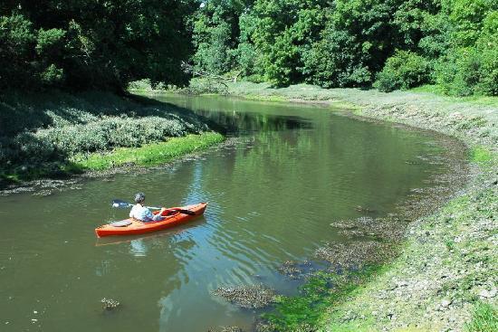 Lawrenny Millennium Hostel: The quiet waterways of the upper Daugleddau