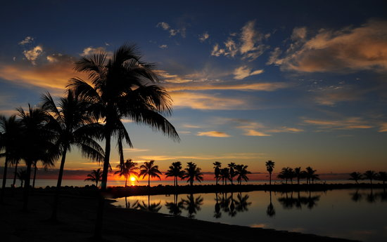Miami, FL: Bring your camera to the park for the daily sunrise/sunset show!!