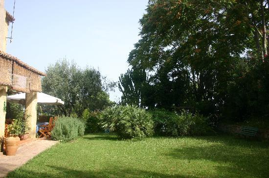 Tenuta U'Locu: Parco