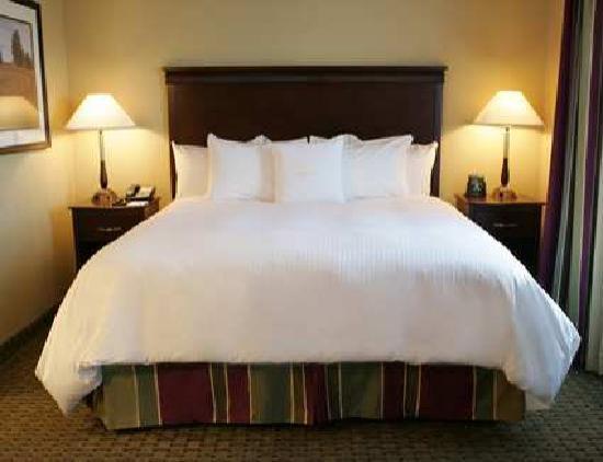 Homewood Suites by Hilton Cambridge-Waterloo, Ontario : King Studio Suite
