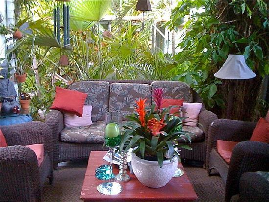 The Mermaid & The Alligator: One of the outdoor lounge areas