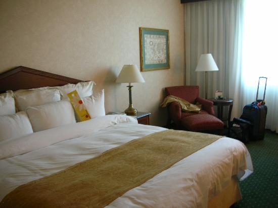 DFW Airport Marriott South : Room (#701)
