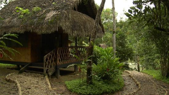 Cotococha Amazon Lodge: another cabin