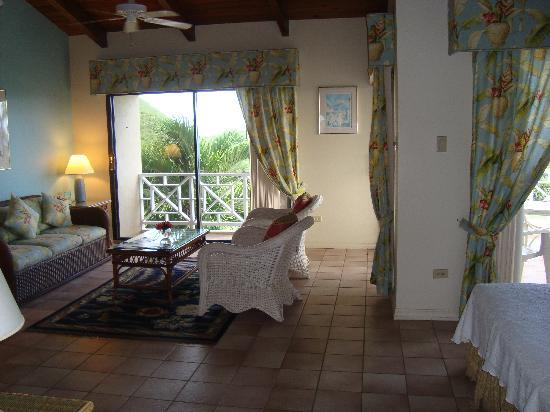 The Mount Nevis Hotel: Room