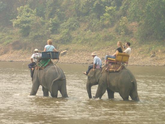 Chiang Rai, Tailandia: Elephant ride