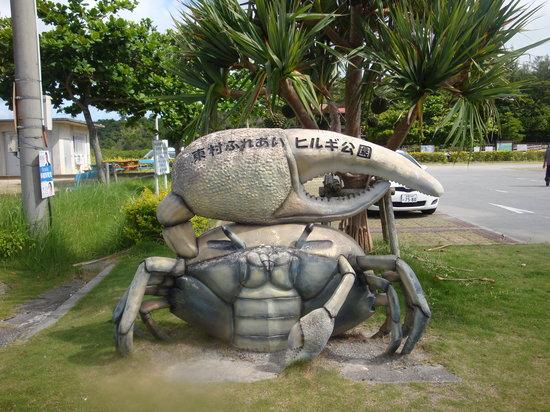 Higashi-son, Japon : ヒルギ公園