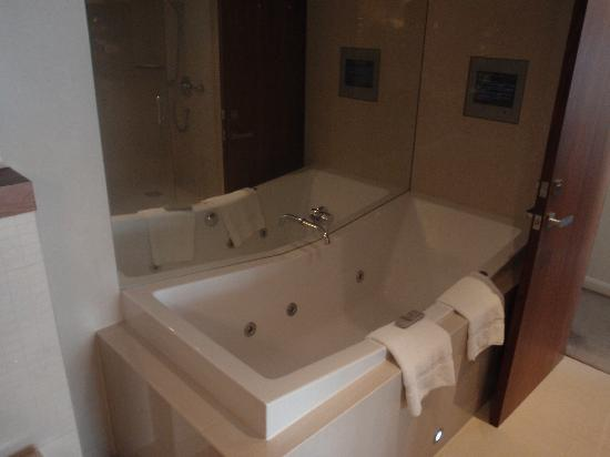 Sofitel Queenstown Hotel & Spa: Spa Bath