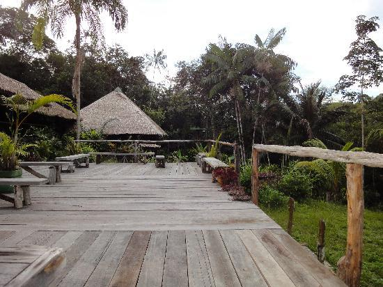 Amazon Village Jungle Lodge : hotel