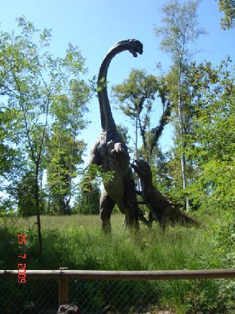 Safari Park: parco giurassico