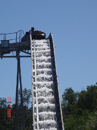 Safari Park : tronchi su acqua