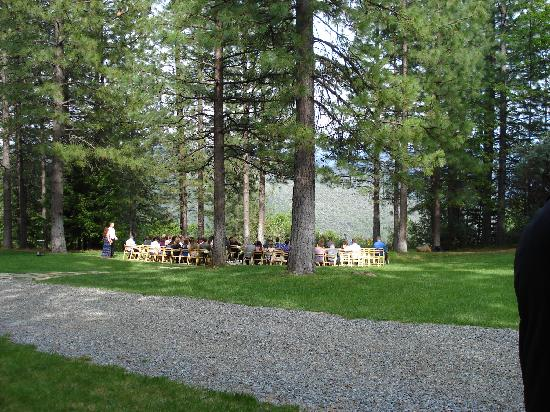 Forest House Lodge: Perfect setting for ceremony.