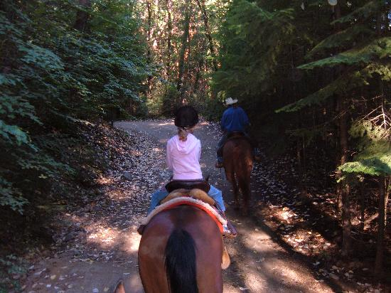 Coffee Creek Ranch: The Breakfast Ride
