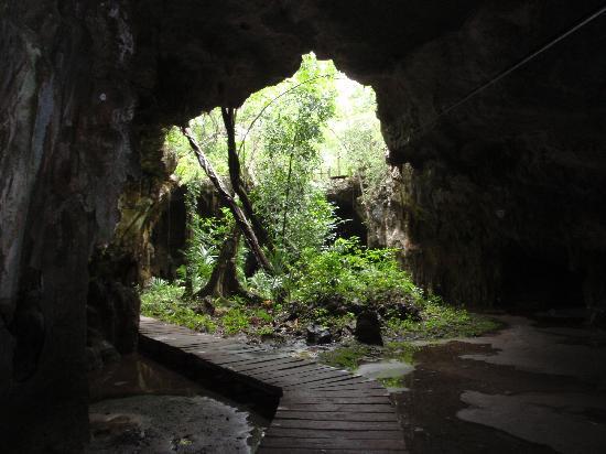 LabnaHa Cenotes & Eco Park: from the bottom of the zipline