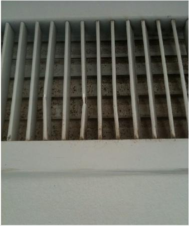 Residence Inn Jacksonville Butler Boulevard: The Lovely Mold on our Air Vent