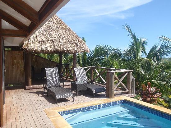 Wananavu Beach Resort: bure