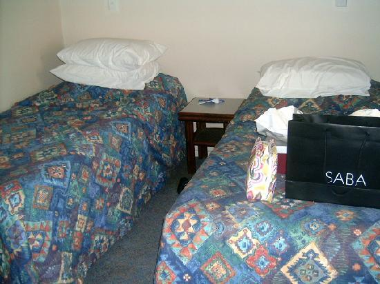 Comfort Inn Wentworth Plaza: Room with two single beds