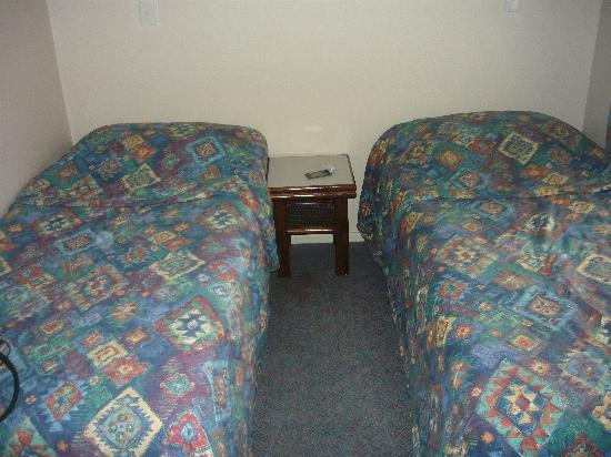 Comfort Inn Wentworth Plaza: Room with twin beds