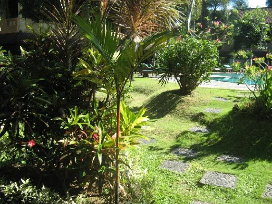 Bali Sandy Cottages: the garden