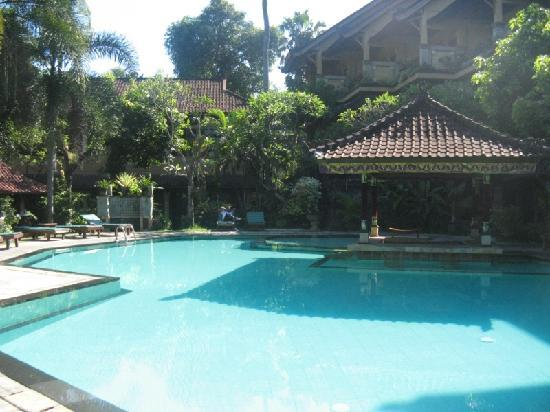 Bali Sandy Cottages: the pool