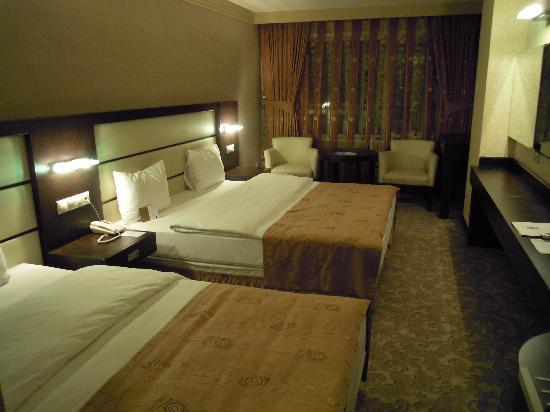 Blue Regency Hotel: triple room