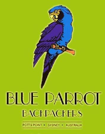 Blue Parrot Backpackers: Welcome to the Blue Parrot Hostel