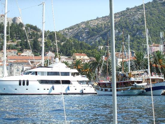 Hvar, كرواتيا: porto di hvar