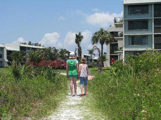 Loggerhead Cay: Sandy path back to the complex.